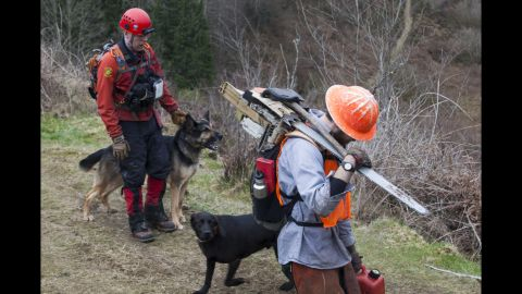 Search-and-rescue workers use dogs to look for survivors on March 25.