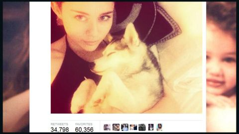 """Tragedy struck in early April 2014 with the death of the singer's favorite pooch, Floyd. <a href=""""http://marquee.blogs.cnn.com/2014/04/02/miley-cyrus-miserable-day-and-more-news-to-note/"""">Cyrus tweeted to her Boston fans</a> in advance of her concert there that she was """"beyond miserable."""" The gift of a new dog from her mother apparently did little to console her, as Cyrus later tweeted that she gave the new dog away to a friend."""