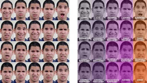 """Scientists have identified 15 new emotions such as """"sadly surprised."""""""