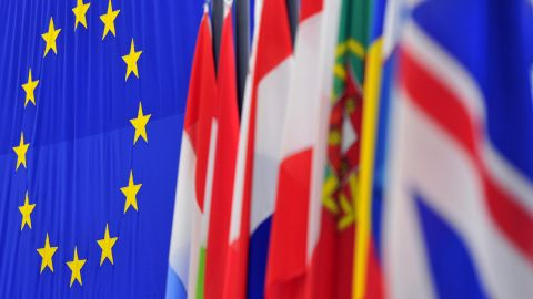 The European Union flag is seen next to flags of member nations at the European Parliament in Strasbourg, France.