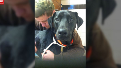Christina Summitt's 16-year-old stepson hugs Tucker before his surgery.