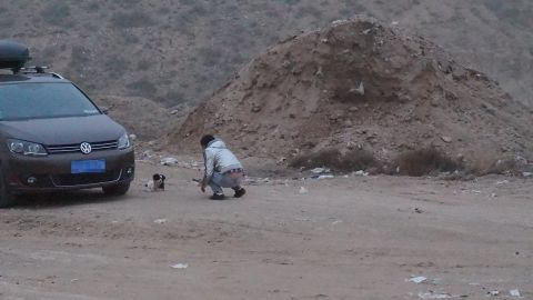A man tries to approach a dog near the scene of an apparent mass burial of stray dogs in Inner Mongolia, China.