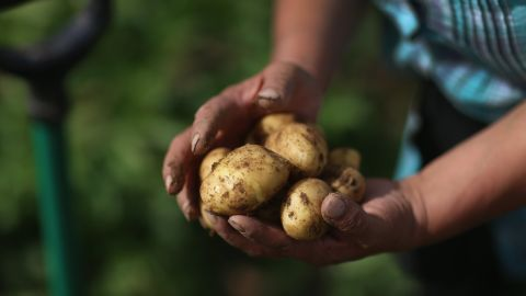 Potatoes cracked the list this year at No. 12. Pears and potatoes were new additions to the Dirty Dozen, displacing cherry tomatoes and cucumbers from last year's list.