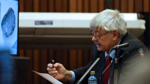 Retired South African Police Service forensics expert, Tom 'Wollie' Wolmarans, speaks during his testimony at the Oscar Pistorius trial at the high court in Pretoria, South Africa, on May 9, 2014.