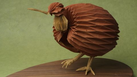 The Surface to Structure exhibition includes 130 works from artists on five continents. Among the pieces is this depiction of a Kiwi, by Bernie Peyton. It is instantly recognizable by its long down-curved bill.