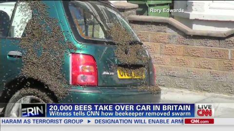 erin intv edwards keilar bees take over car britain_00001705.jpg
