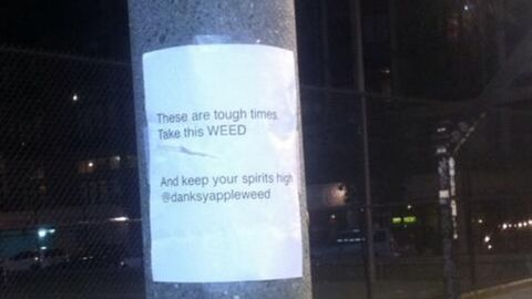 Somebody already got to this one, but here's another Weed Fairy flier posted in Seattle.
