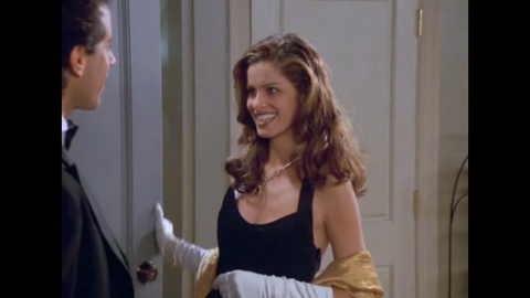 """Amanda Peet is in season 8 as Jerry's date to the Tonys. Peet plays a waitress named Linette who has a male roommate (whom she is also probably seeing on the side). Eventually, Linette starts to date Jerry exclusively, but her active lifestyle gets to Jerry. Peet's reputation got a boost playing Marin in """"Something's Gotta Give"""" opposite Jack Nicholson and Diane Keaton."""