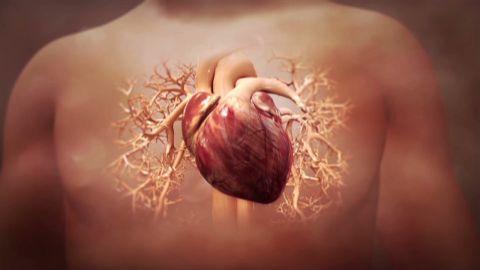 sgmd pkg stem cells heart attack_00005113.jpg