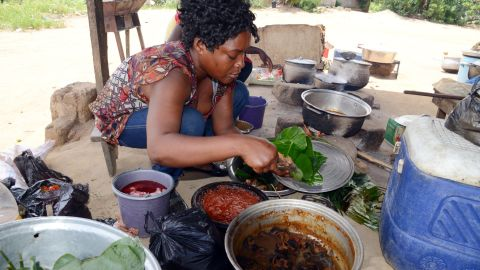 The Ivorian Ministry of Health has asked Ivorians to avoid consuming or handling bushmeat. The virus can spread to animal primates and humans who handle infected meat -- a risk given the informal trade in bushmeat in forested central and West Africa.