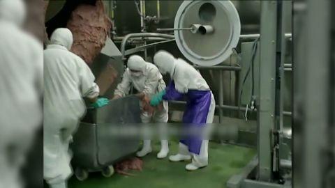 pkg vassileva china meat scandal_00002804.jpg