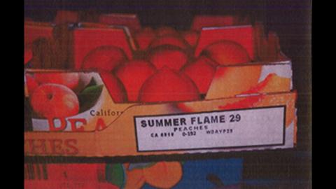 """Sam's """"Summer Flame"""" peaches (4 lbs. per carton)"""