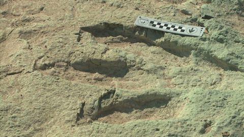 dnt dinosaur tracks 125 million years old utah_00013308.jpg