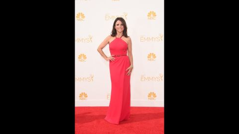 """""""Veep"""" star Julia Louis-Dreyfus arrived in style at the 2014 Emmys."""
