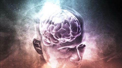 orig am animation brain on heroin sanjay gupta_00000029.jpg