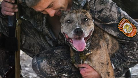 A pro-Russian rebel holds a dog, which has a hand grenade attached to its leash, in Donetsk on Wednesday, September 3.