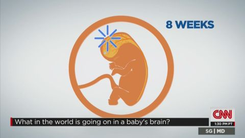 sgmd gupta cgi investing in babies minds_00005520.jpg