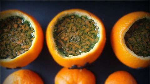 Embrace your inner zombie with edible carrot-gelatin brains.