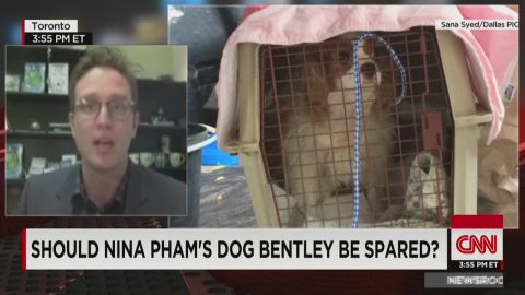 exp nr.pets.with.ebola.infected.owners.dan.riskin_00041202.jpg