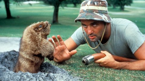 """""""Caddyshack"""" (1980) cemented Murray as a big-screen star. As groundskeeper Carl Spackler, he fights a gopher and his """"Cinderella story"""" speech is often copied."""