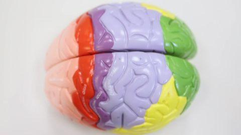 bipolar disorder explained sanjay orig mg_00010814.jpg