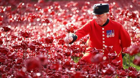 Each of the flowers has been sold -- for £25 (about $40) -- to benefit charities working with armed services personnel and veterans.