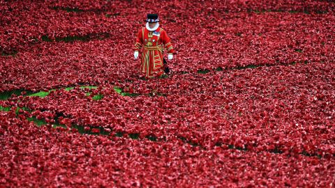 The display is due to end on November 11 -- Armistice Day -- when the final poppy is planted shortly before 11am.