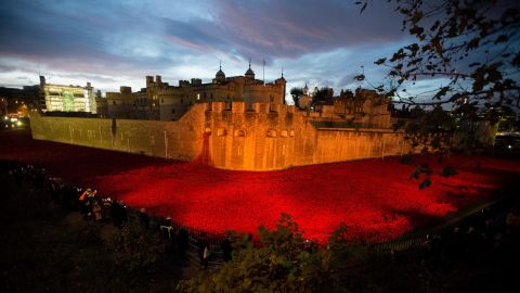 The near completed ceramic poppy art installation by artist Paul Cummins entitled 'Blood Swept Lands and Seas of Red' is seen lit up before sunrise in the dry moat of the Tower of London in London, Tuesday, Nov. 11, 2014. The finished installation will be made up of 888,246 ceramic poppies, with the final poppy being placed on Armistice Day today. Each poppy represents a British and Commonwealth military fatality from World War I.