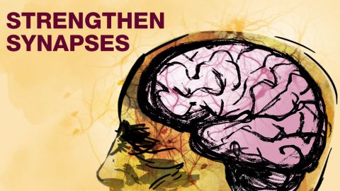 Supplements like DHA and citicoline may help strengthen the connections between your brain's nerve cells, says Bredesen.