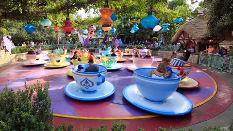 The earthquake in Southern California forced the temporary closue of rides at Disneyland.