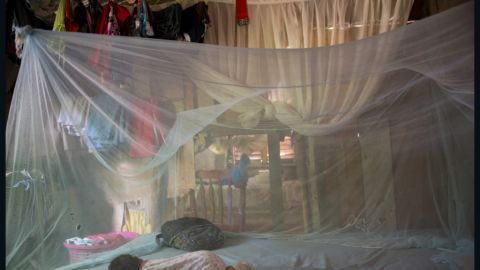 People living in affected regions are advised to sleep under bed nets to avoid being bitten by infected mosqutoes.