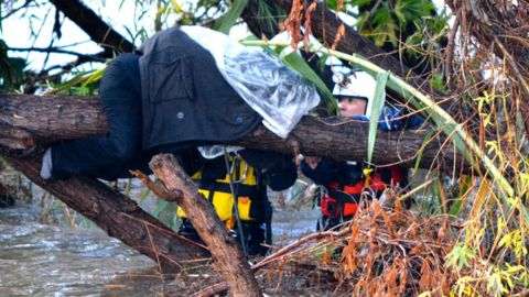 A homeless woman wrapped in protective plastic is trapped on a tree branch in the flooded Los Angeles River. She was later rescued.