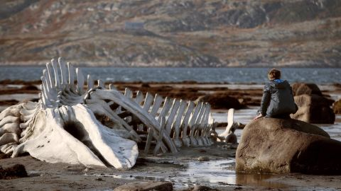 """<strong>Best foreign language film: </strong>""""Leviathan"""" (Russia)"""