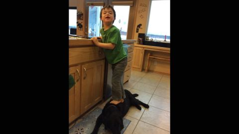 """PETA criticized Sarah Palin in January after she posted this photo of her 6-year-old son, Trig, stepping on a family dog to reach the kitchen sink. """"Dear PETA,"""" Palin responded via Facebook. """"Chill. At least Trig didn't eat the dog."""""""