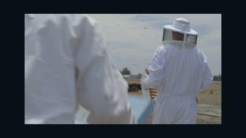 ms im ron bees 1_00000108.jpg