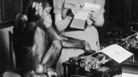 """The """"infinite monkey theorem"""" states that given enough time, a monkey will eventually type any given text on a keyboard, including William Shakespeare's whole body of work."""