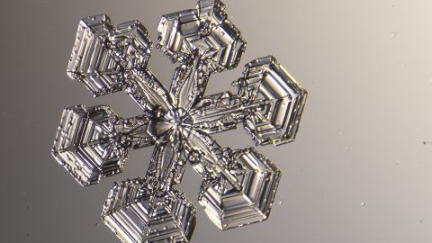 """Michael Peres has been<a href=""""http://instagram.com/michael_peres"""" target=""""_blank"""" target=""""_blank""""> photographing snowflakes</a> under a microscope for 13 years. Every time it snows in Rochester, New York, he runs outside, ready to photograph the tiny flakes."""