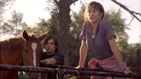 """The 2006 indie film """"Transamerica"""" starred Felicity Huffman as a transgender woman taking a road trip with her long-lost teenage son. Huffman was nominated for an Academy Award for the role."""