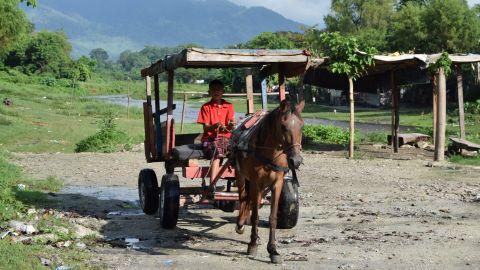 A child drives a makeshift horse-drawn carriage in San Pedro Sula, Honduras.