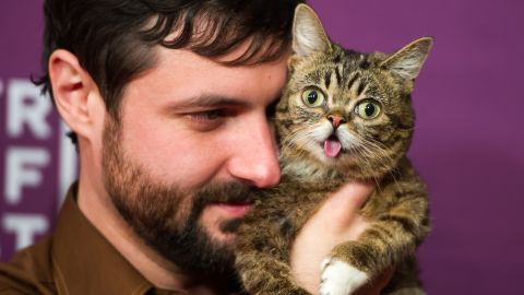 """Owner Mike Bridavsky and celebrity cat <a href=""""https://twitter.com/iamlilbub"""" target=""""_blank"""" target=""""_blank"""">Lil Bub</a> at the screening of """"<a href=""""http://www.imdb.com/title/tt2877280/"""" target=""""_blank"""" target=""""_blank"""">Lil Bub & Friendz</a>"""" during the 2013 Tribeca Film Festival in New York."""