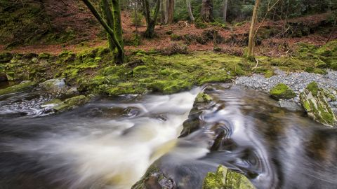 This beautiful woodland in Northern Ireland's County Down appears in the first ever episode of season one. It's also used for hunting scenes in other episodes.