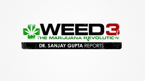 Dr. Sanjay Gupta puts medical marijuana under the microscope.