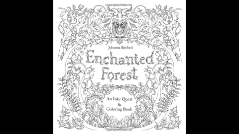 """Illustrator Johanna Basford's second book, """"<a href=""""http://www.amazon.co.uk/Enchanted-Forest-Inky-Quest-Colouring/dp/1780674872/ref=pd_sim_b_1?ie=UTF8&refRID=1VVBHG6Z0VPHHZMCPC6J"""" target=""""_blank"""" target=""""_blank"""">Enchanted Forest</a>,"""" also made the bestseller lists."""