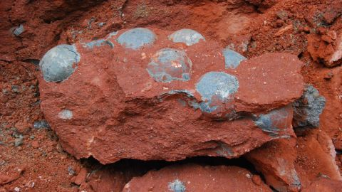 """<a href=""""http://www.cnn.com/2015/04/21/asia/china-dinosaur-eggs-found/"""">Construction workers unearthed 43 fossilized dinosaur eggs </a>during road repair work in the city of Heyuan in the southern Chinese province of Guangdong on Sunday, April 19, officials said."""