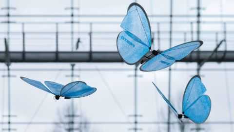 """Festo's <a href=""""http://edition.cnn.com/2015/05/06/tech/mci-bionic-insects/"""">butterflies</a> perfectly recreate the delicate flight of the insect."""