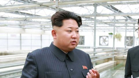 """This undated picture released from North Korea's official Korean Central News Agency (KCNA) on May 19, 2015 shows North Korean leader Kim Jong-Un (C) inspecting the Taedonggang terrapin farm in Pyongyang. AFP PHOTO / KCNA via KNS REPUBLIC OF KOREA OUT THIS PICTURE WAS MADE AVAILABLE BY A THIRD PARTY. AFP CAN NOT INDEPENDENTLY VERIFY THE AUTHENTICITY, LOCATION, DATE AND CONTENT OF THIS IMAGE. THIS PHOTO IS DISTRIBUTED EXACTLY AS RECEIVED BY AFP. ---EDITORS NOTE--- RESTRICTED TO EDITORIAL USE - MANDATORY CREDIT """"AFP PHOTO / KCNA VIA KNS"""" - NO MARKETING NO ADVERTISING CAMPAIGNS - DISTRIBUTED AS A SERVICE TO CLIENTS KNS/AFP/Getty Images"""