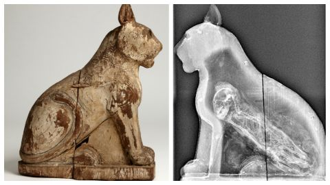"""The cat mummy came from Saqqara, south of modern day cairo. It was """"a major animal cemetery,"""" says Dr Lidija McKnight."""