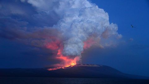 """The Wolf volcano at Isabela Island -- the largest of the Galapagos Islands west of mainland Ecuador -- erupts May 25, 2015 <a href=""""http://www.cnn.com/2015/05/26/americas/galapagos-volcano-erupts/"""">for the first time in 33 years.</a>"""