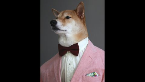 """Bodhi, the Shiba Inu who is the star of the Menswear Dog blog, wears a pale suit jacket, oxford shirt and bow tie in this image from the book <a href=""""http://www.workman.com/products/9781579656164/"""" target=""""_blank"""" target=""""_blank"""">""""Menswear Dog Presents: The New Classics.""""</a> Click through to see more of Bodhi's styles as they are presented online and in the book."""