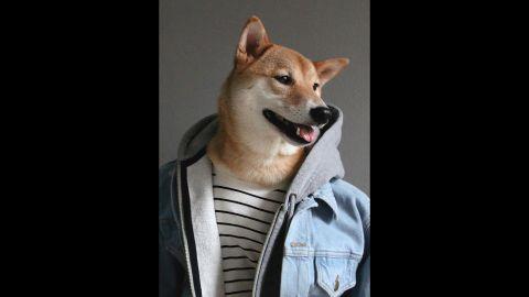 Hooded sweatshirt, striped Breton shirt, denim jacket